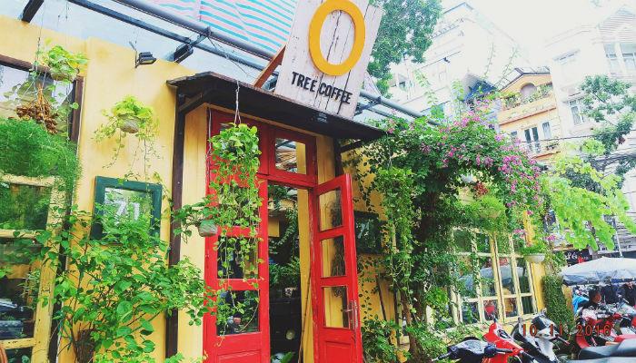 Cafe xanh Hà Nội Ohi Tree & Coffee