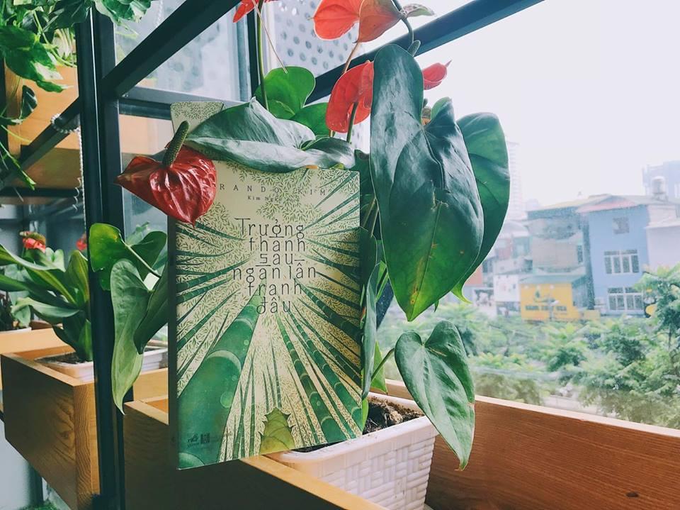 5 quán cafe yên tĩnh đọc sách Hà Nội các mọt không thể bỏ lỡ